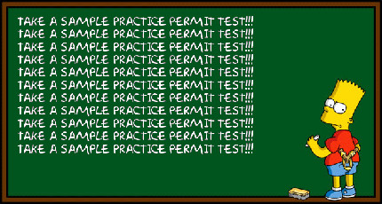 Take a sample permit test the night before the real DMV test!