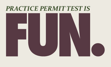 This Practice Permit Test Is Fun!